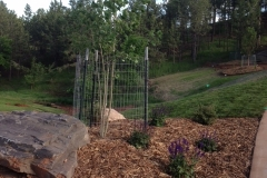 BlackHillsLandscapes-0003